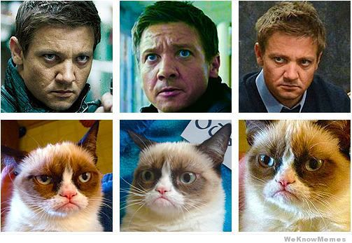 Jeremy Renner=Grumpycat