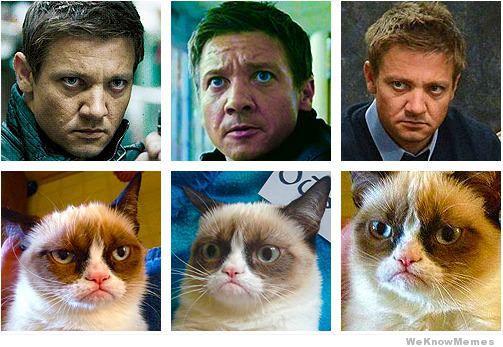 Jeremy Renner=Grumpycat